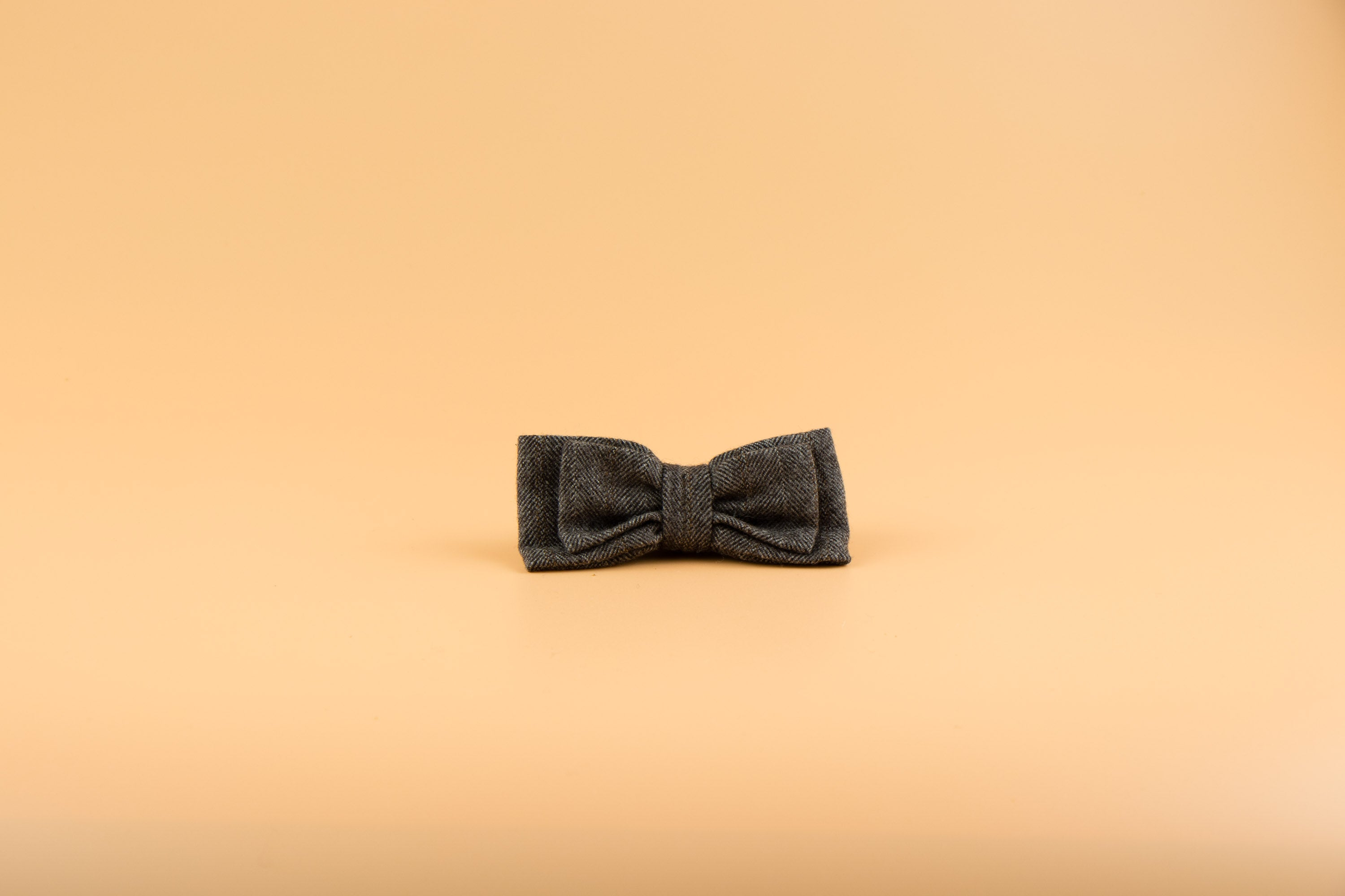 Parker Brown - Dog Bow Tie