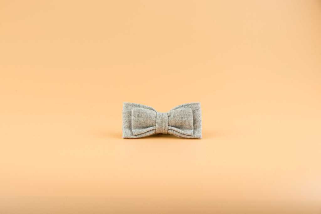 Soho Light - Dog Bow Tie