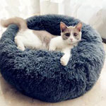 Cat Beds & Sofas
