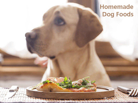 homemade dog foods