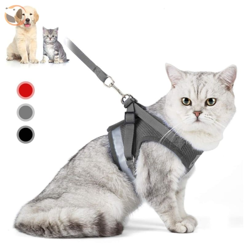 Adjustable and Reflective Pet Harness