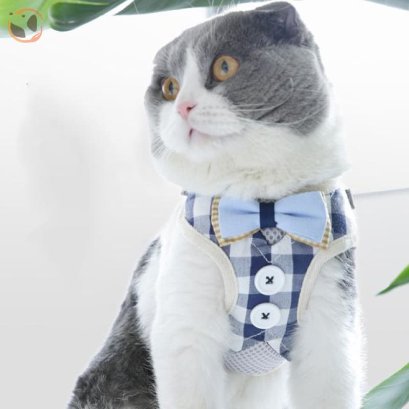Adjustable Harness with Leash for Cats - blue size L