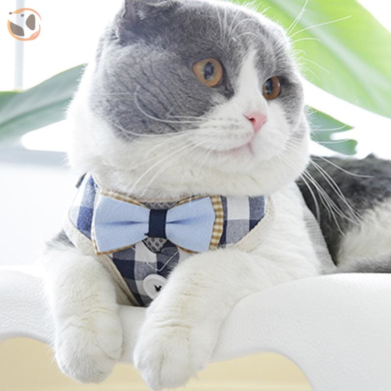 Adjustable Harness with Leash for Cats