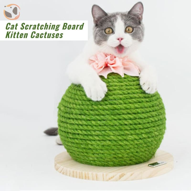 Cactuses Shaped Funny Cat Scratch Pad
