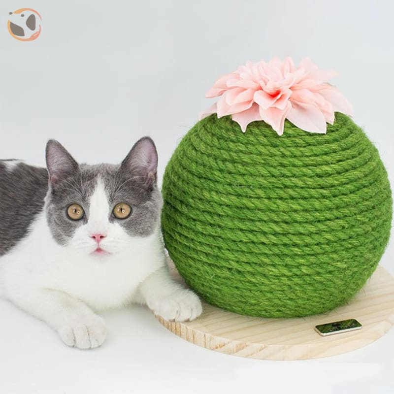 Cactuses Shaped Funny Cat Scratch Pad - STD