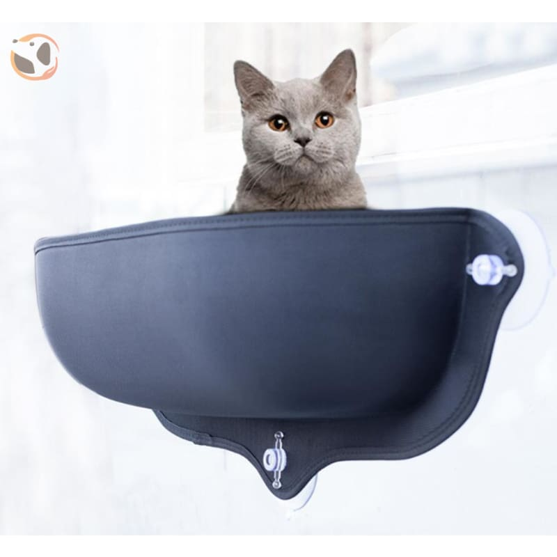 Cat Hammock&Bed with Suction Cups