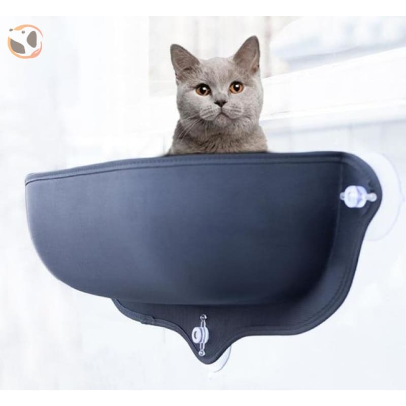 Cat Hammock&Bed with Suction Cups - Black / 26.7X11