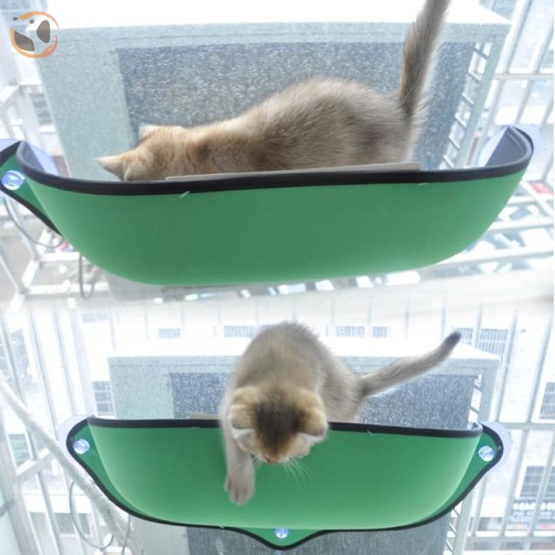 Cat Hammock&Bed with Suction Cups - Green / 26.7X11