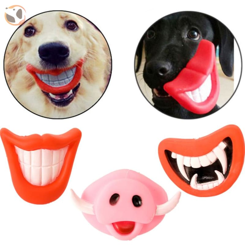 Chewable Funny Dog Squeaky Toys