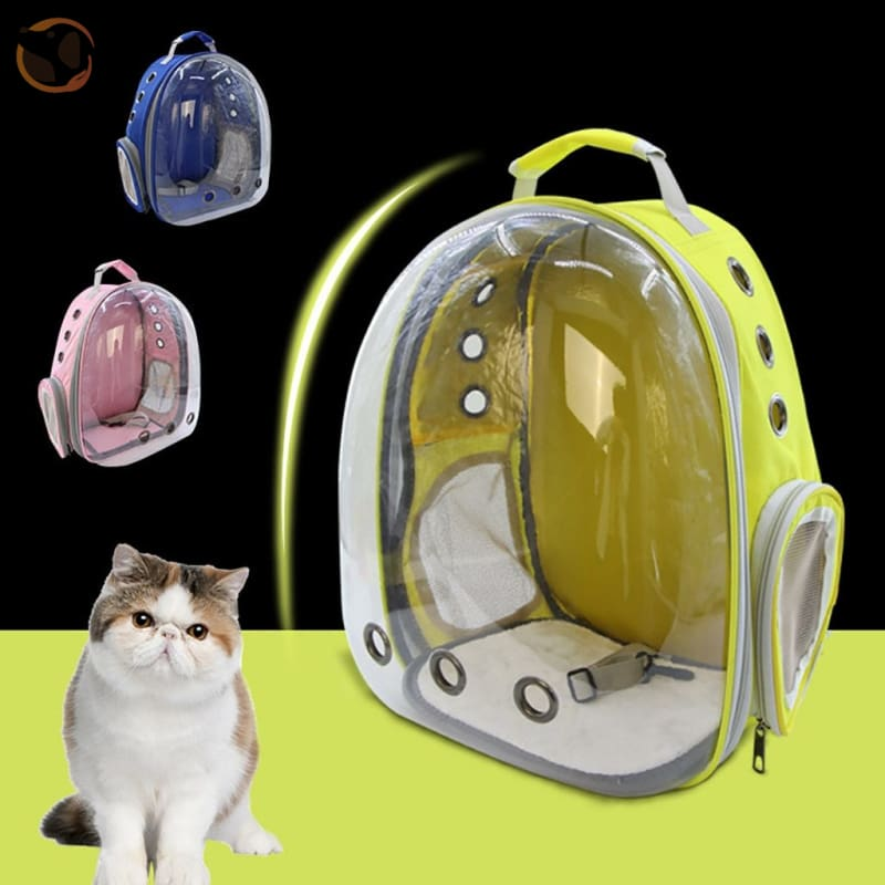 Clear Window Design Car Carrier Backpack