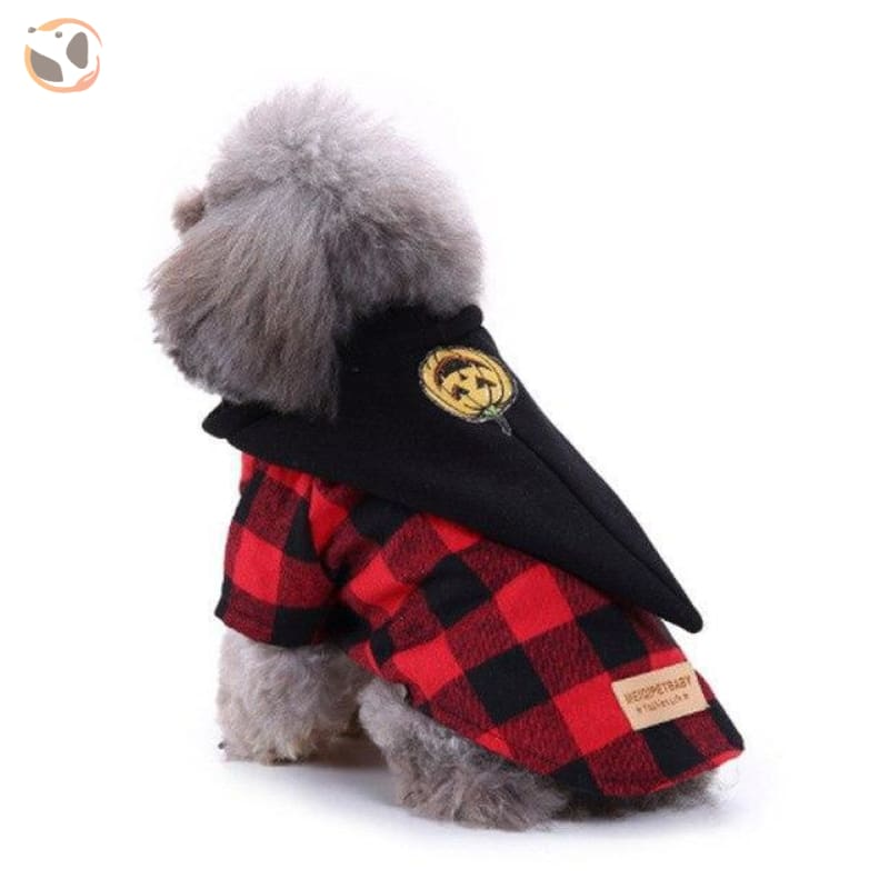 Dog Cosplay Costumes For Halloween - Witch / S