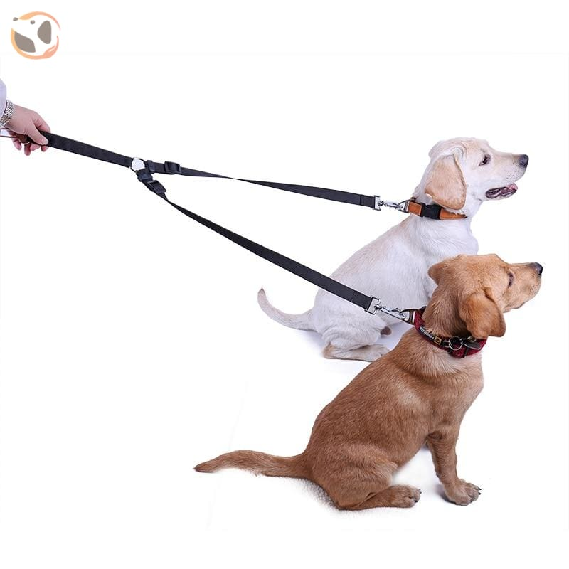 Durable Seat Belt & Outdoor Dog Leashes For 2 Dogs