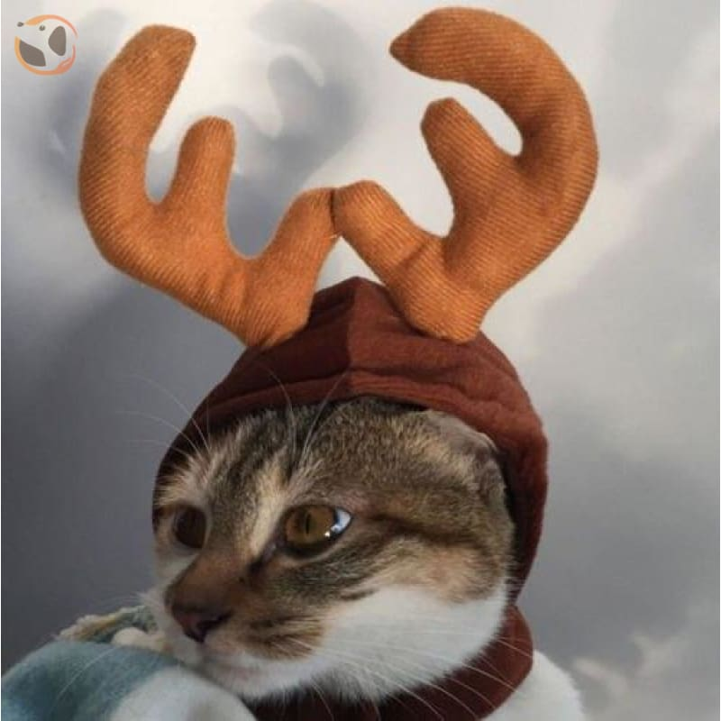 Elk Reindeer Headwear for Cats & Dogs - Coffee / one size