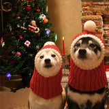 Funny Christmas Dog Hat