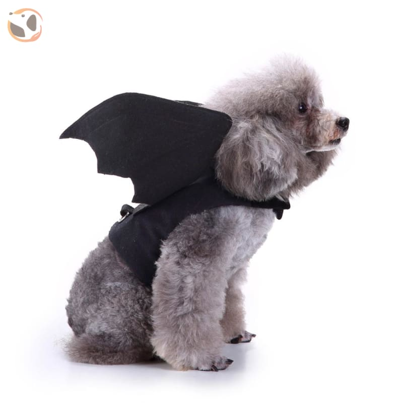 Funny Dog Costumes For Halloween - Bat / L