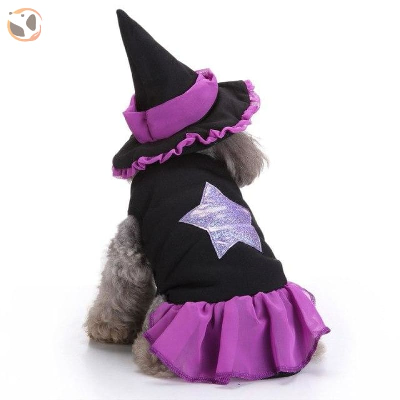 Funny Dog Costumes For Halloween - Wizard / L