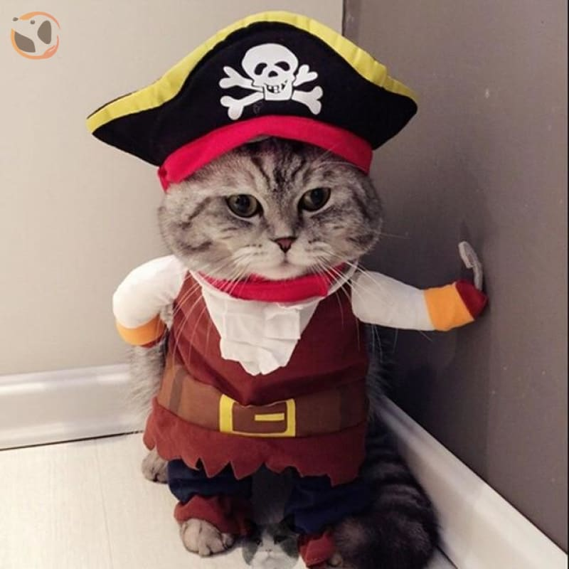 Halloween Cat Costumes - Cat Pirate Clothes / S