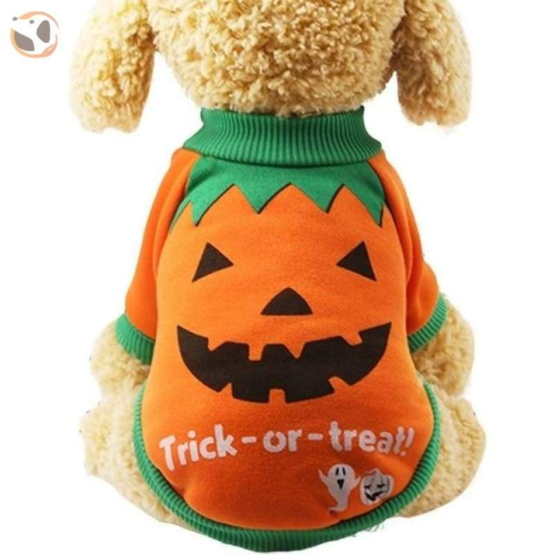 Halloween Costume for Small Dogs - orange / XXL