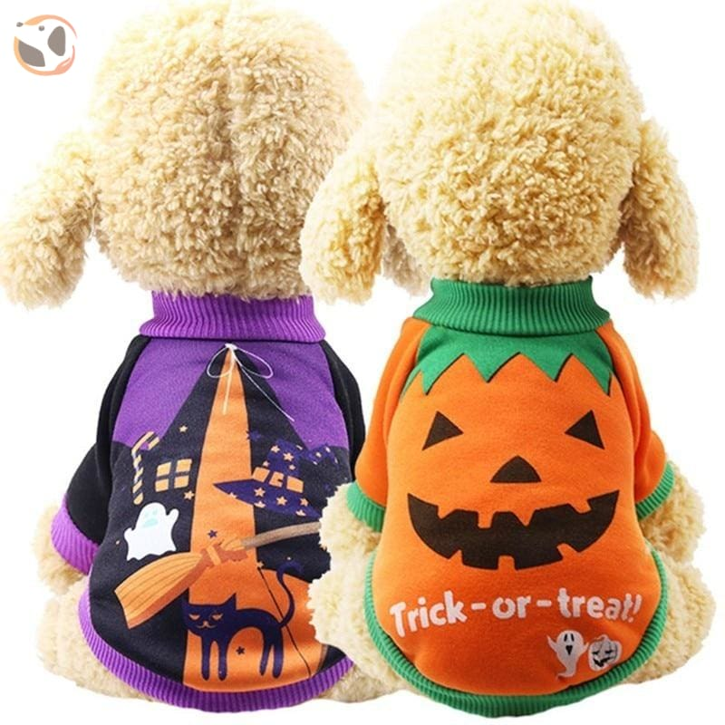 Halloween Costume for Small Dogs