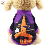 Halloween Costume for Small Dogs - Purple / XXL