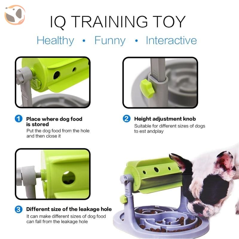 IQ Training Puzzle Dog Toy