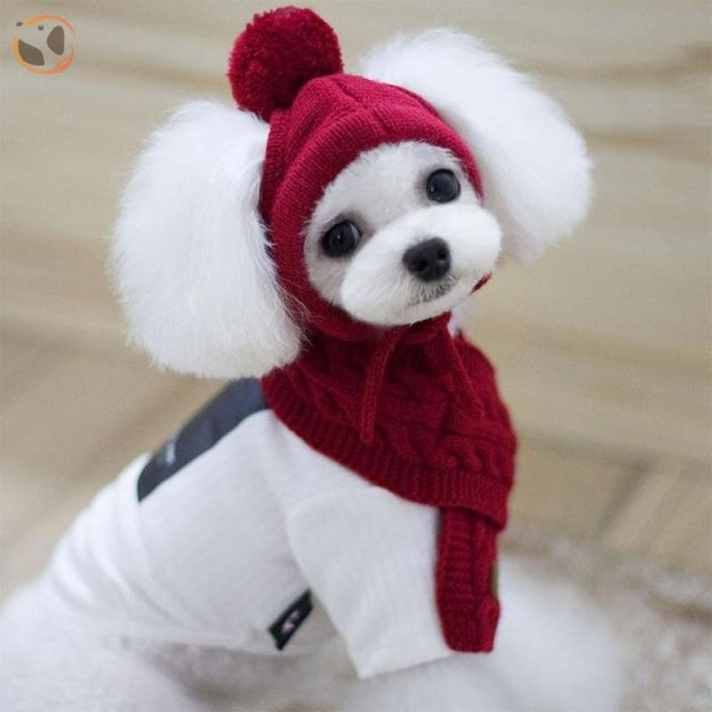 Knitted Pet Hat Scarf Set for Dogs - Red / M