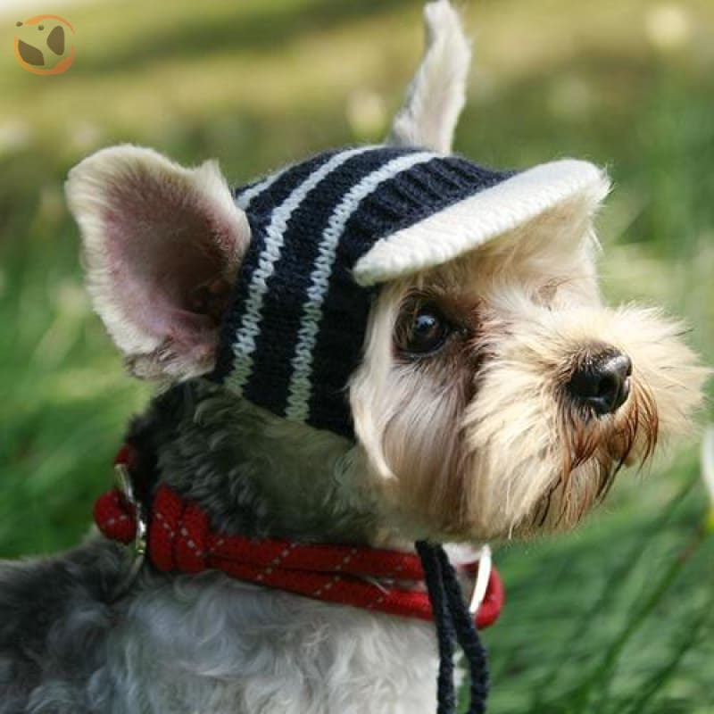 Luxury Knitting Sunscreen Hats For Small Dogs - Black / S