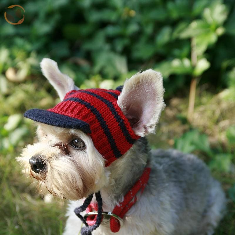 Luxury Knitting Sunscreen Hats For Small Dogs