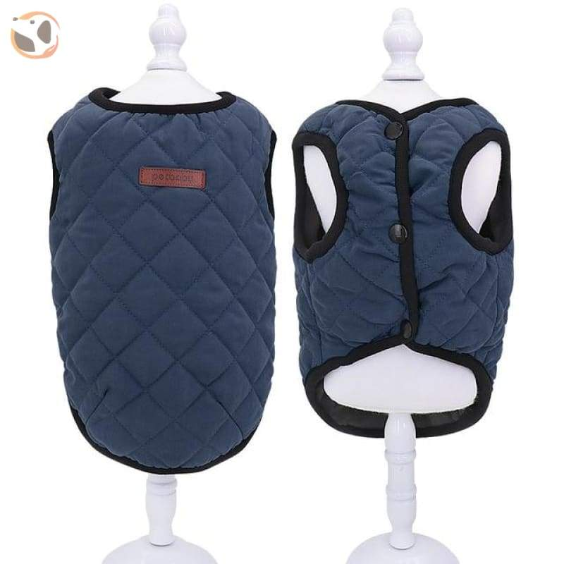 Outfit Jacket for Small Pets - Blue / M