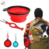 Portable Dog Bowl For Travel And Walking