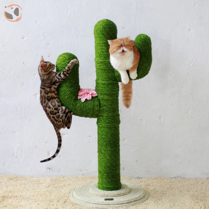 Rope for Cat Climbing Tree