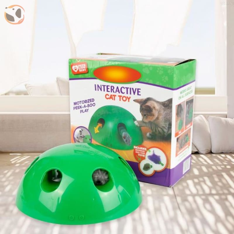 Scratching Toy for Cats - Green with box / feather