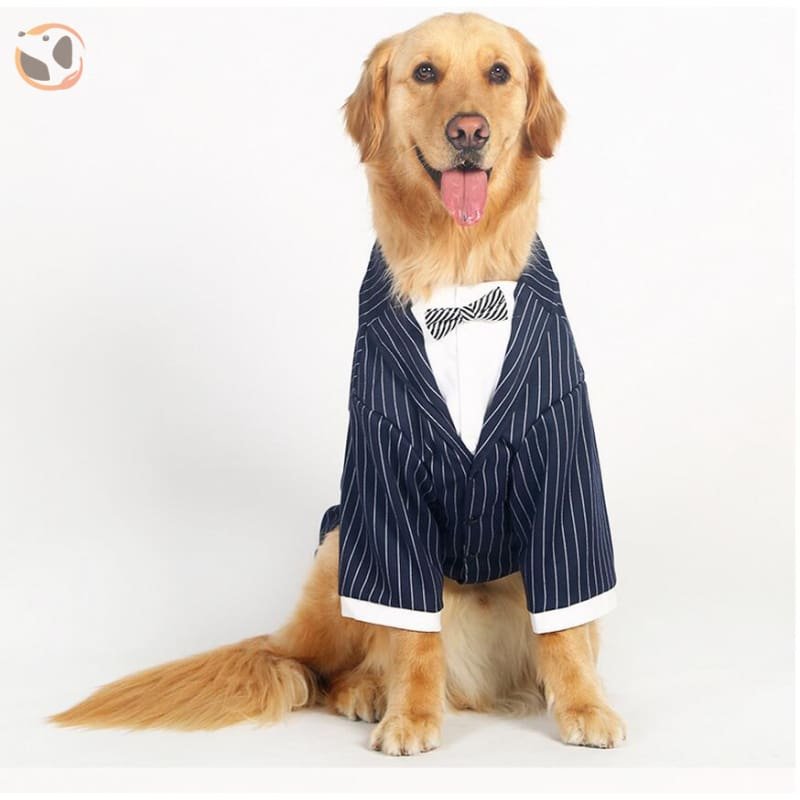 Stylish Striped Dog Tuxedo - Black / 3XL