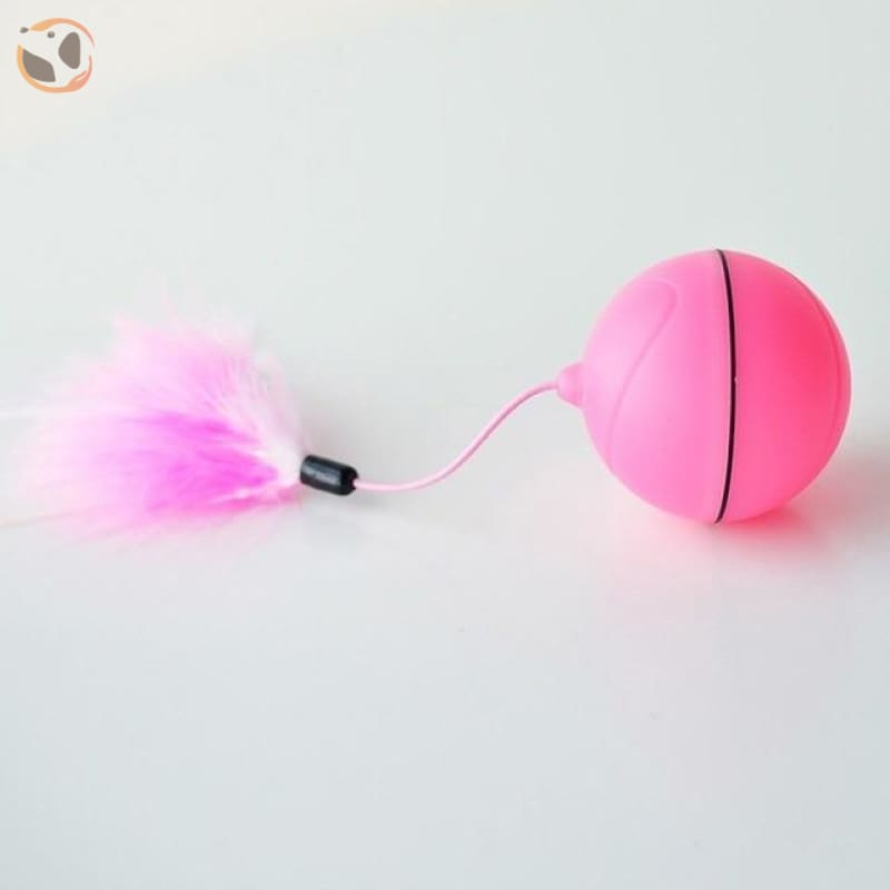 USB Rechargeable Electric Rolling Ball Toys for Cats - Rose-Charging style