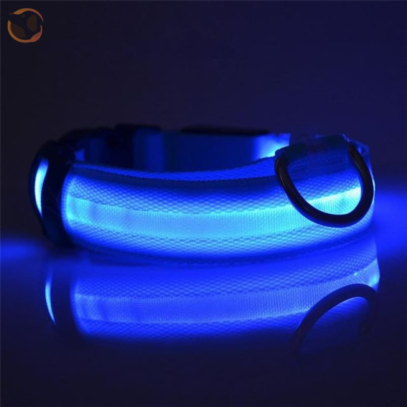 Usb Rechargeable Led Dog Collars - Blue / L