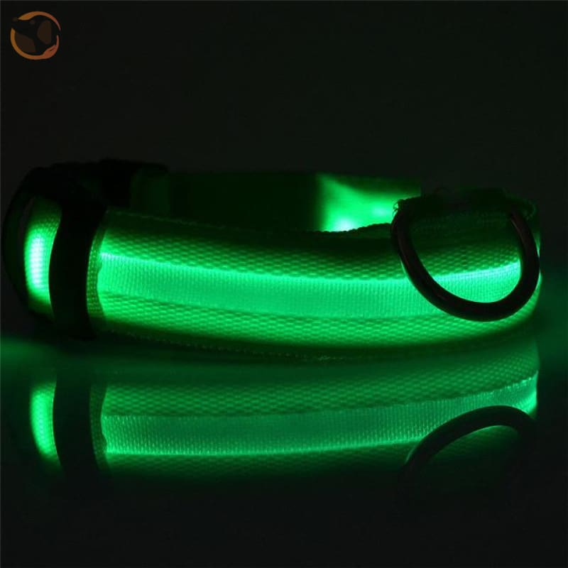 Usb Rechargeable Led Dog Collars - Green / L