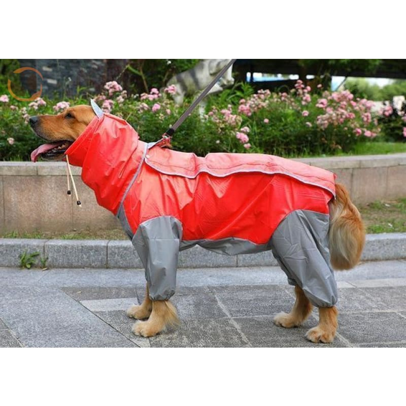 Waterproof Dog Raincoats For Large Dogs - Red / S