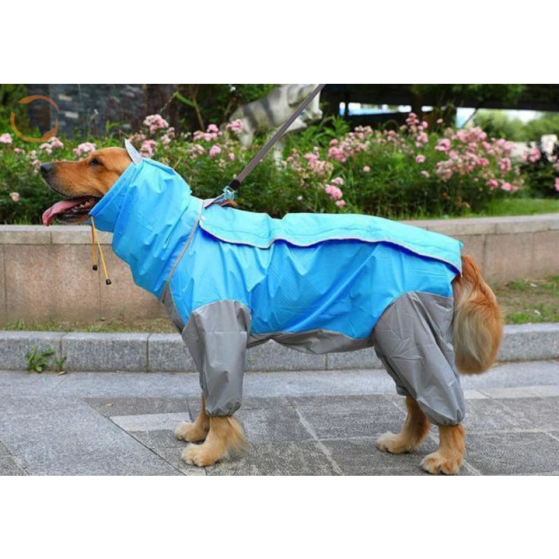 Waterproof Dog Raincoats For Large Dogs - Sky Blue / S