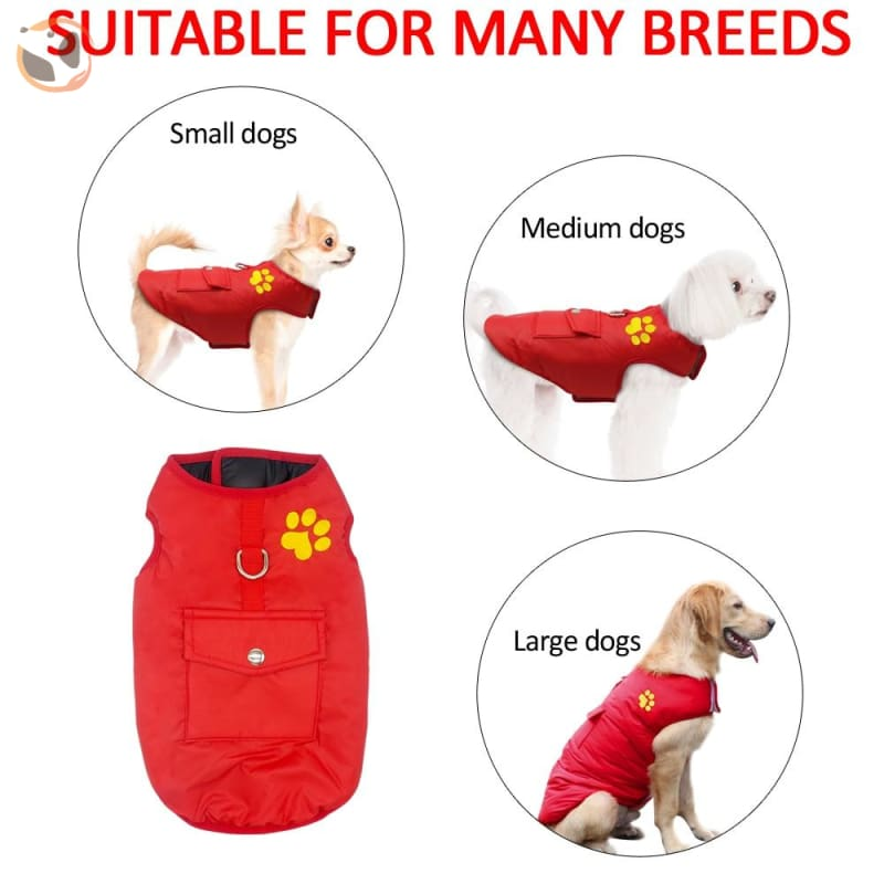 Waterproof Patterned Dog Coats