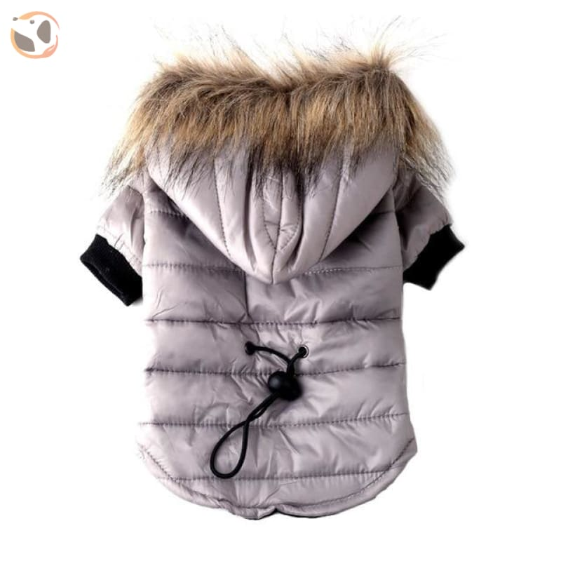 Winter Coat for Small Dogs - Gray / XS