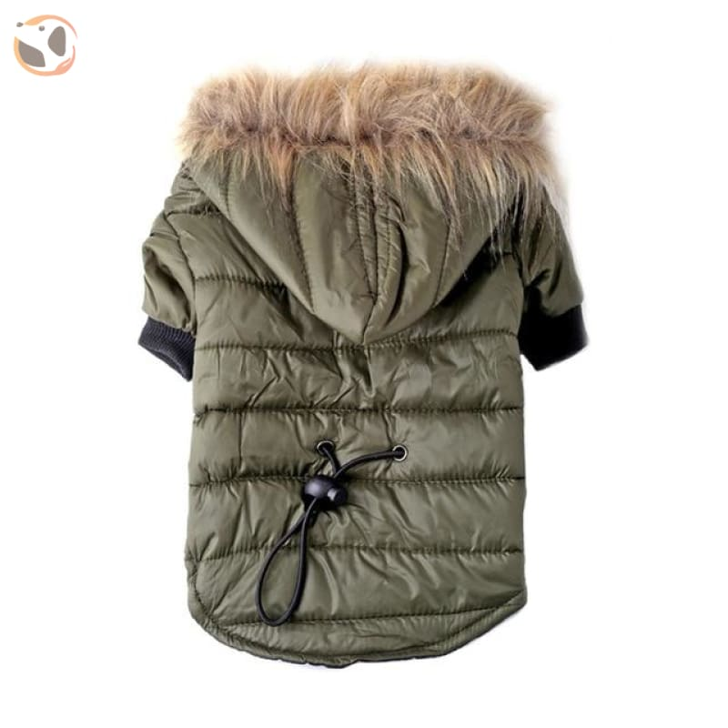 Winter Coat for Small Dogs - Green / XS