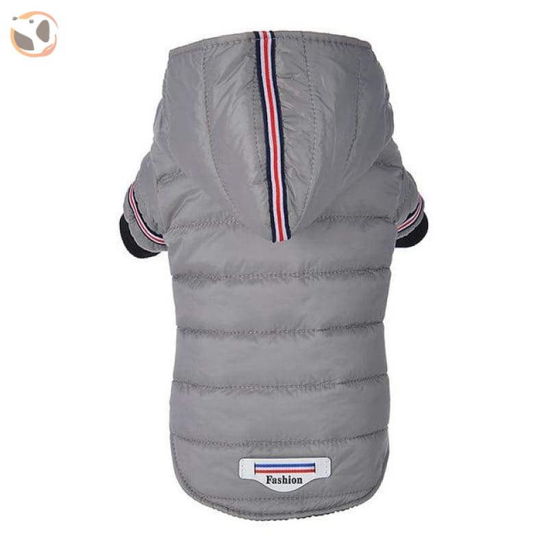 Winter Jacket for Small and Medium Dogs - Gray / L