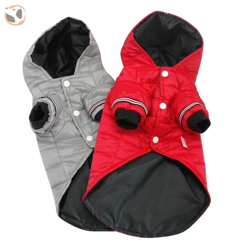 Winter Jacket for Small and Medium Dogs