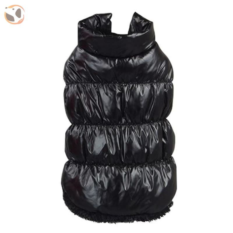 Winter Padded Small And Large Dog Coats - Black / 3Xl