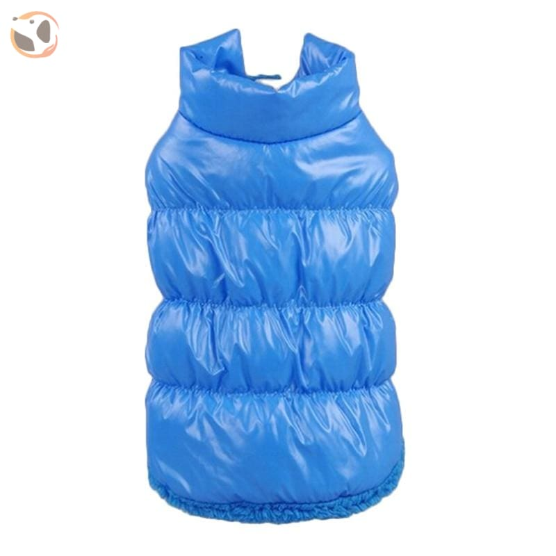 Winter Padded Small And Large Dog Coats - Blue / 3Xl