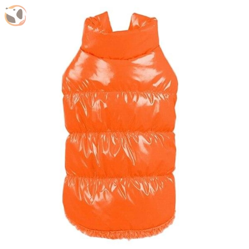 Winter Padded Small And Large Dog Coats - Orange / 3Xl