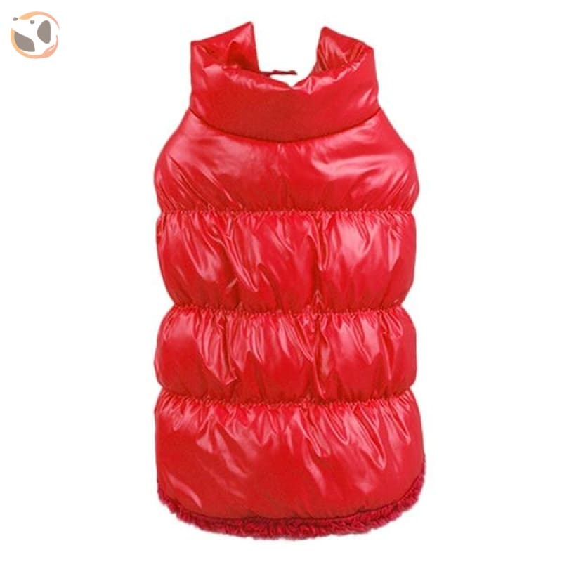 Winter Padded Small And Large Dog Coats - Red / 3Xl