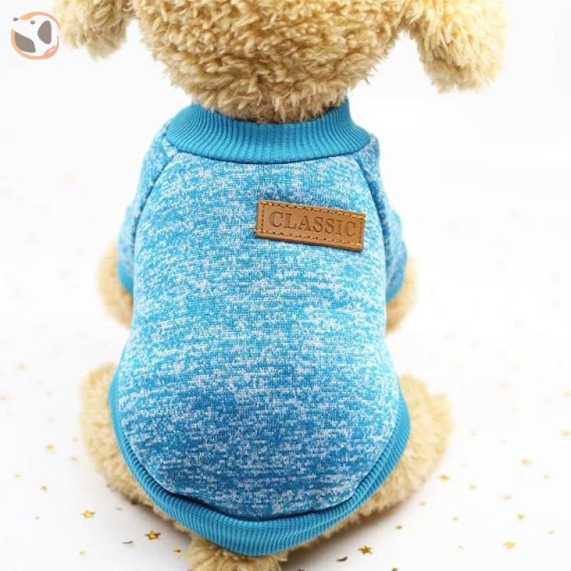 Winter Sweater for Small Dogs - 3 / L