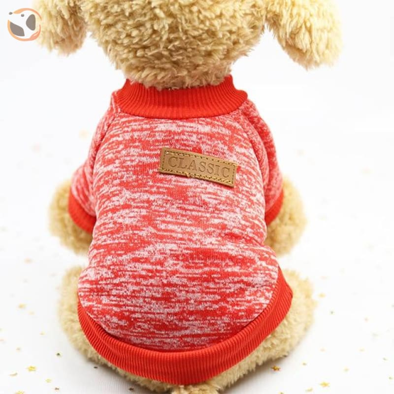 Winter Sweater for Small Dogs - 4 / L
