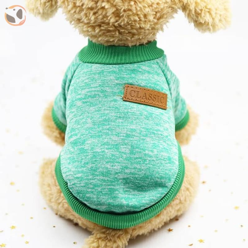 Winter Sweater for Small Dogs - 5 / L
